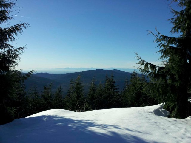 View over to the Olympic peninsula. Not the best (clearest) day, but it was very nice to see some sunshine after a week of clouds.