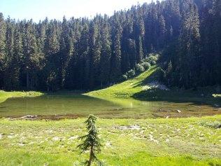 Badger lake.